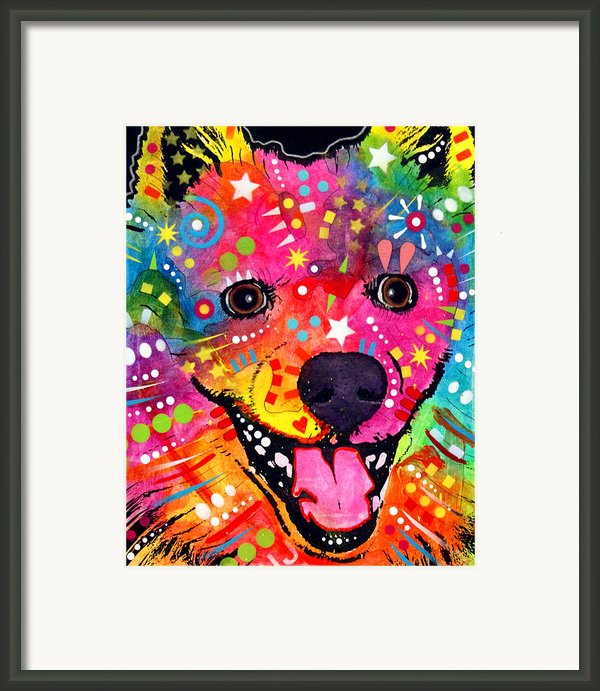 American Eskimo Dog Framed Print By Dean Russo