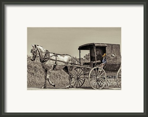 Amish Boy Tips Hat Framed Print By Robert Frederick