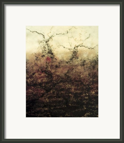 Apocalypse Framed Print By Ione Citrin