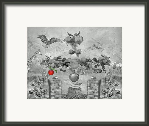 Apple Of Knowledge Framed Print By Manfred Lutzius