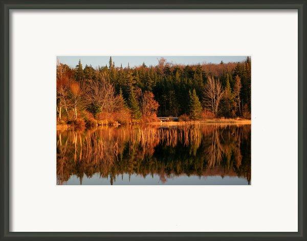 Autumn Lake Framed Print By Kate  Leikin