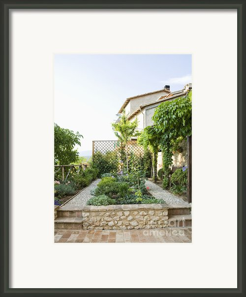 Backyard Garden Framed Print By Andersen Ross