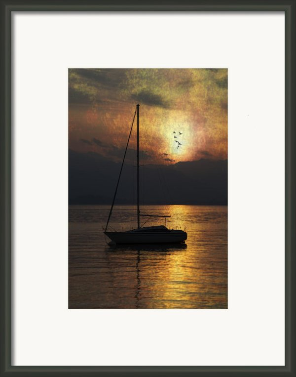 Boat In Sunset Framed Print By Joana Kruse