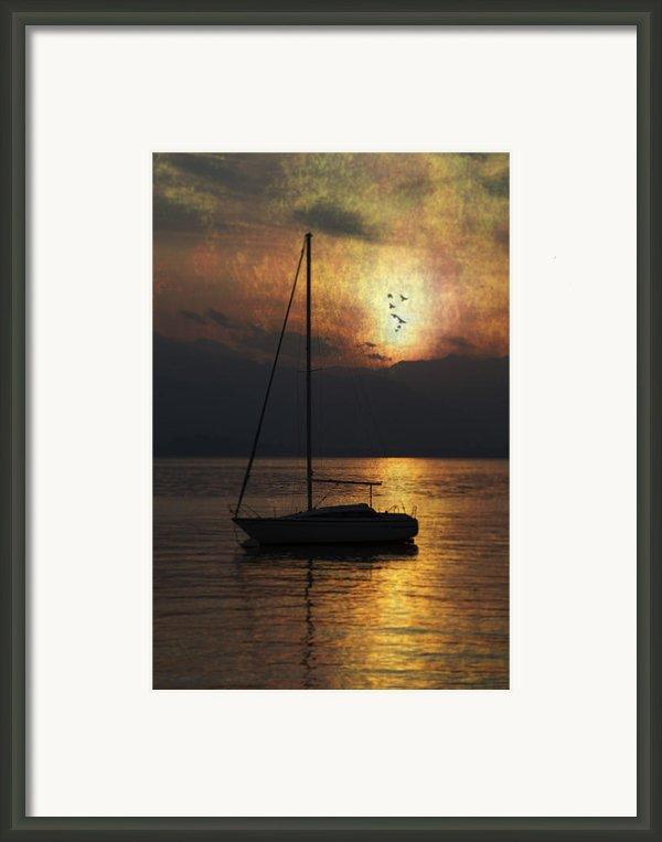 Boat In Sunset Framed Print By Joana Kruse