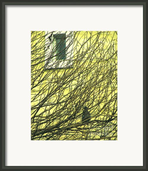 Branch Office Framed Print By Joe Jake Pratt