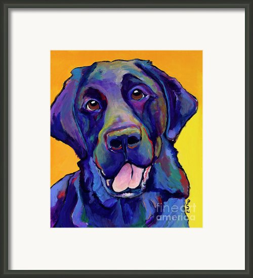 Buddy Framed Print By Pat Saunders-white