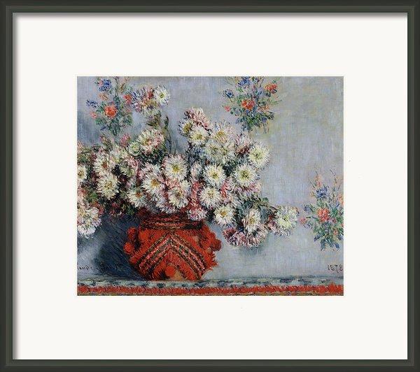 Chrysanthemums Framed Print By Claude Monet