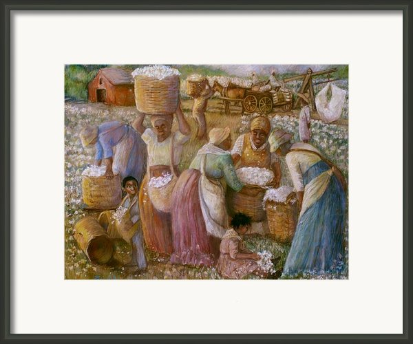 Cotton Fields Framed Print By Pamela Mccabe