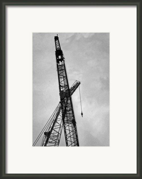 Cranes In Love Framed Print By Robert Ullmann