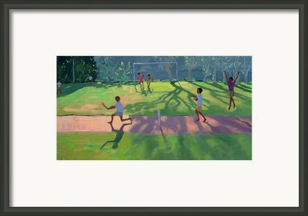 Cricket Sri Lanka Framed Print By Andrew Macara