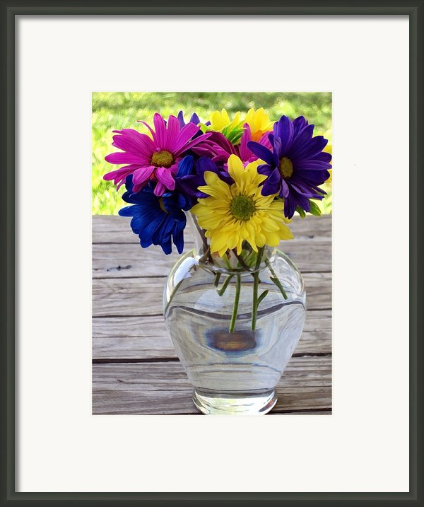 Daisy Crazy Framed Print By Angelina Vick