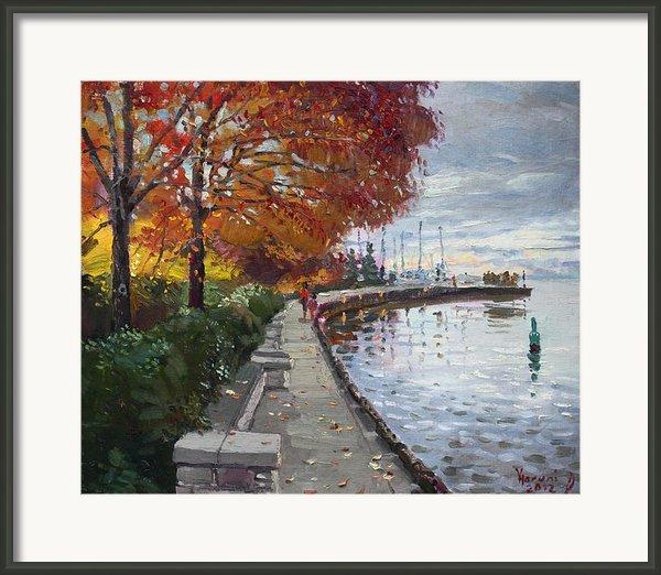 Fall In Port Credit On Framed Print By Ylli Haruni