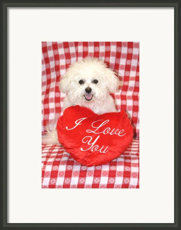 Fifi Loves You Framed Print By Michael Ledray