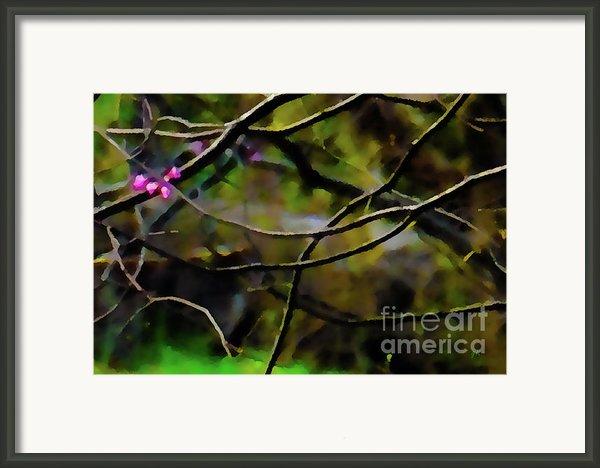 First Sign Of Spring Framed Print By Gerlinde Keating - Keating Associates Inc