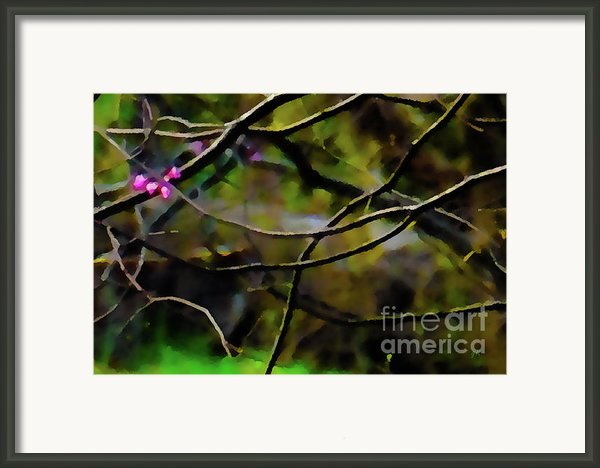 First Sign Of Spring Framed Print By Gerlinde Keating - Keating Associates Inc