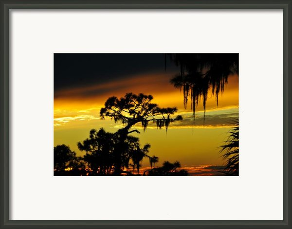Florida Sunset Framed Print By David Lee Thompson