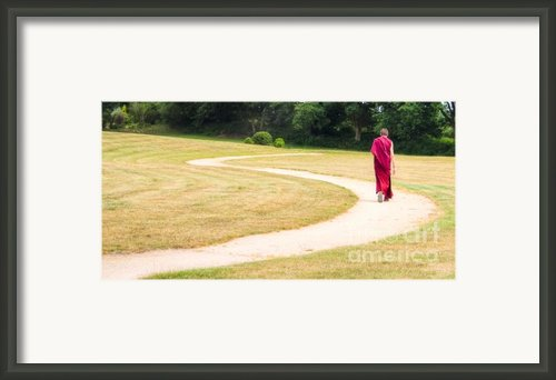 Following Buddha Framed Print By Sophie De Roumanie