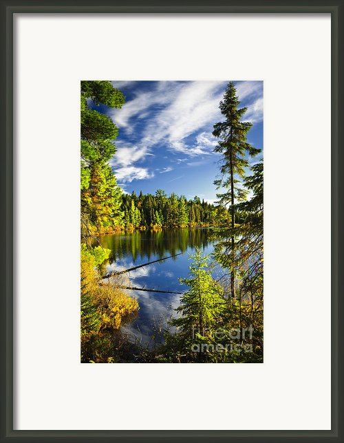 Forest And Sky Reflecting In Lake Framed Print By Elena Elisseeva