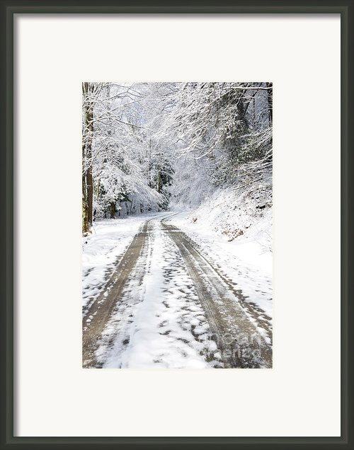 Forest Service Road 76 Framed Print By Thomas R Fletcher