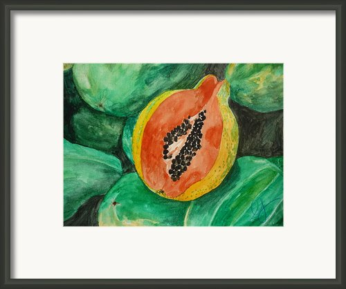Fresh Papaya For Sale Framed Print By Estephy Sabin Figueroa