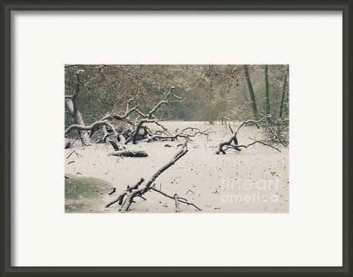 Frozen Fallen Framed Print By Andy Smy