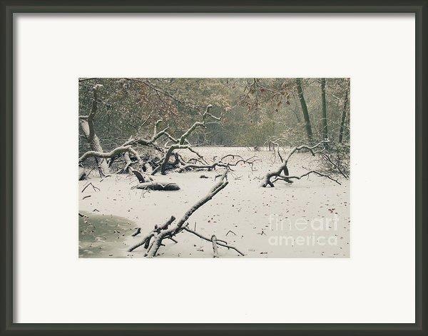 Frozen Fallen Framed Print By Andy Smy