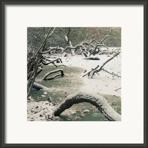 Frozen Fallen Sq Framed Print By Andy Smy