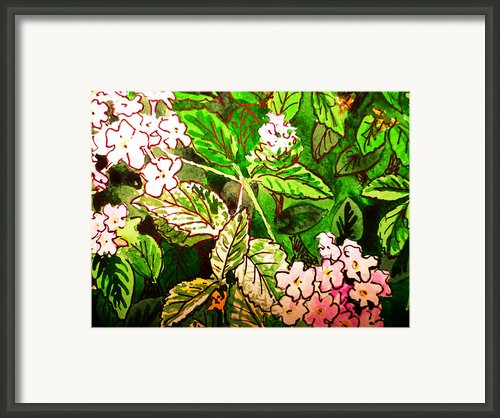 Garden Flowers Sketchbook Project Down My Street Framed Print By Irina Sztukowski
