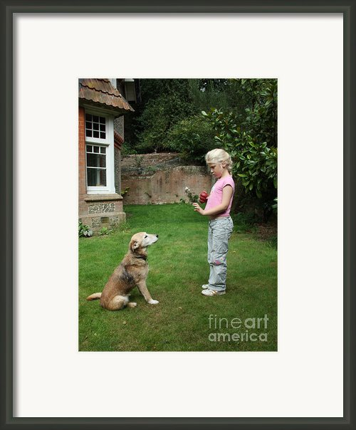 Girl Playing With Dog Framed Print By Mark Taylor