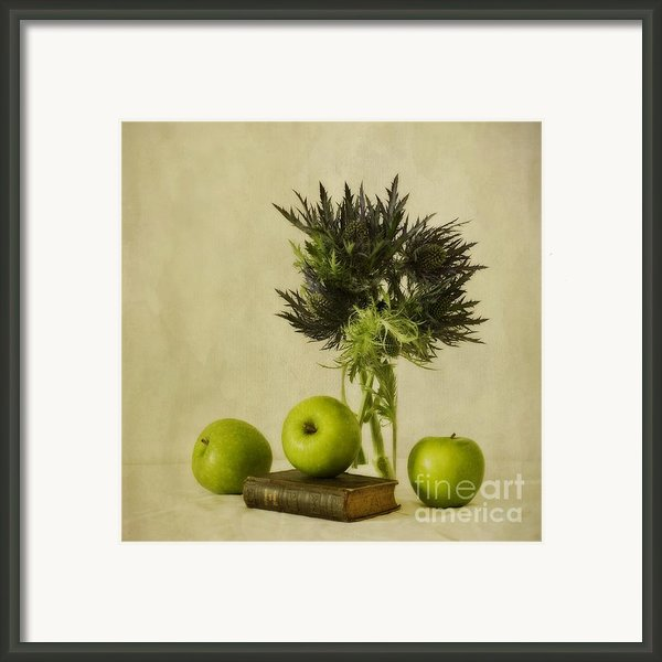 Green Apples And Blue Thistles Framed Print By Priska Wettstein