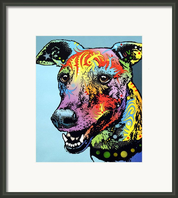 Greyhound Luv Framed Print By Dean Russo