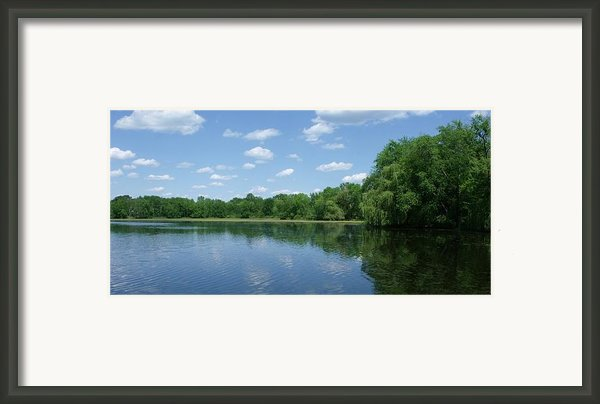 Harris Pond Framed Print By Anna Villarreal Garbis
