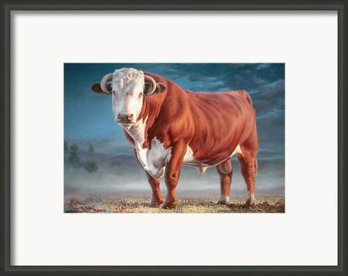 Hereford Bull Framed Print By Hans Droog
