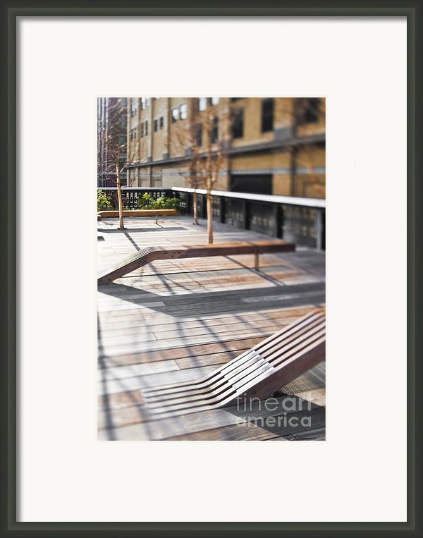 High Line Park Framed Print By Eddy Joaquim