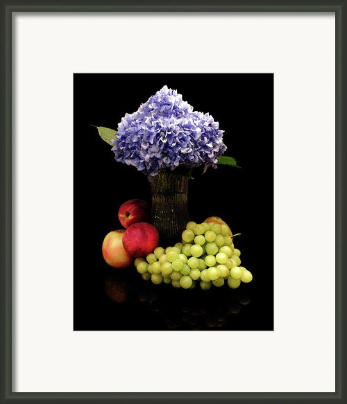 Hydrangea And Fruit Framed Print By Sandi Oreilly