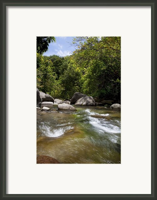 Iao River Framed Print By Jenna Szerlag