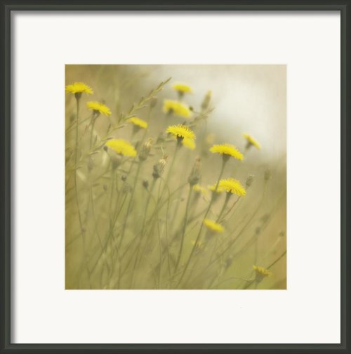 In The Mist Framed Print By Rebecca Cozart