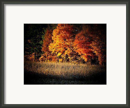 Indiana Autumn Framed Print By Michael L Kimble