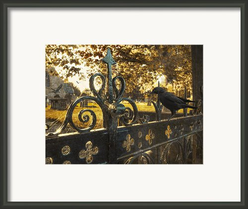 Jackdaw On Church Gates Framed Print By Christopher And Amanda Elwell