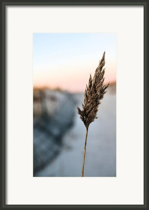 Jones Beach Framed Print By Jc Findley