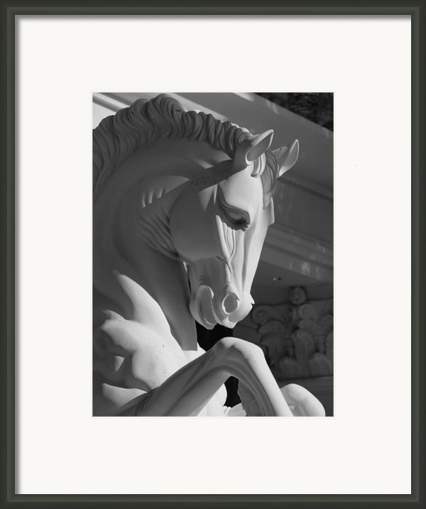 Knight Framed Print By Linda Edgecomb