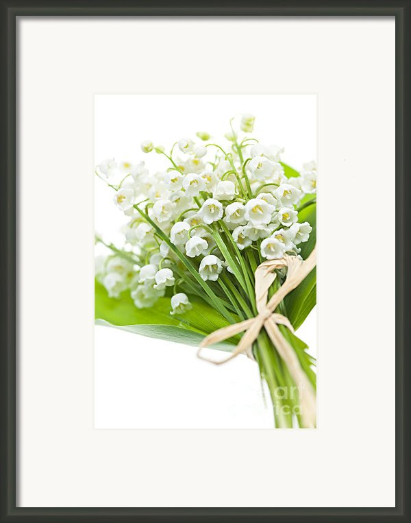 Lily-of-the-valley Bouquet Framed Print By Elena Elisseeva