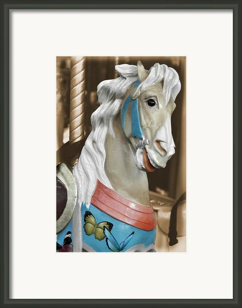 Menagerie Framed Print By Jamart Photography