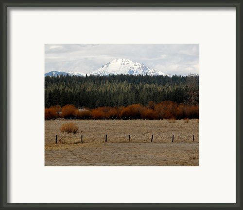 Mountain Meadow Framed Print By Lydia Warner Miller