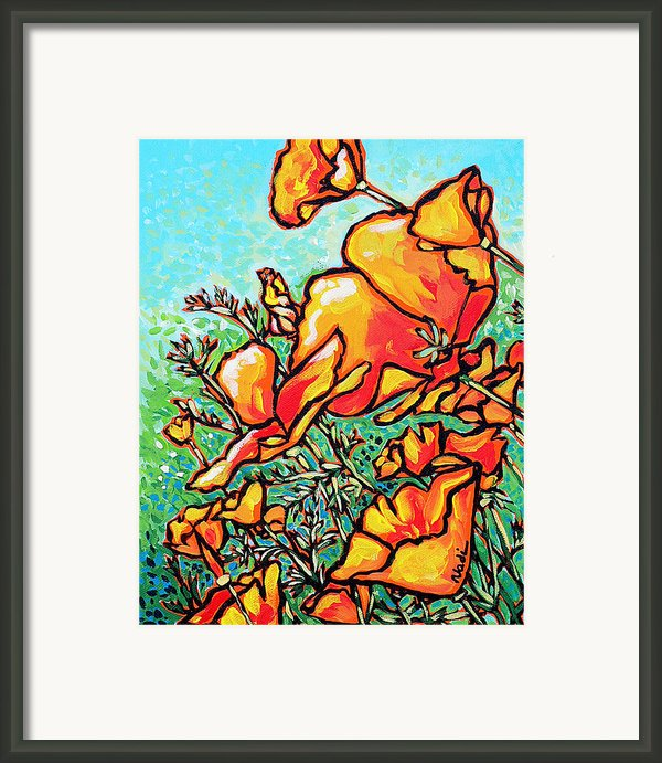 Poppies Framed Print By Nadi Spencer