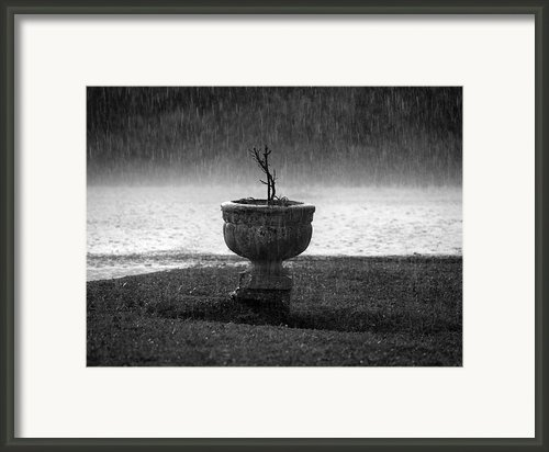 Rain On Me Framed Print By Vilma Rohena