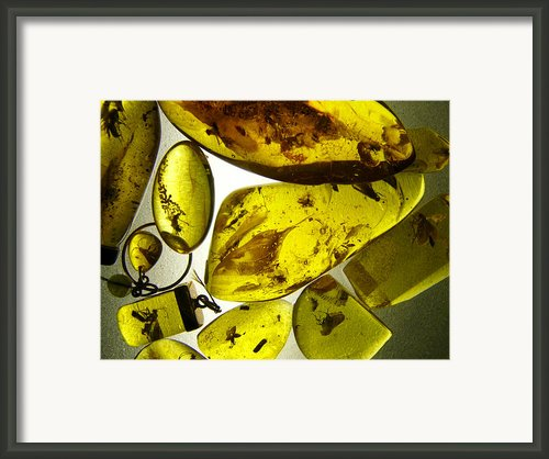 Raw Amber Framed Print By Aleksandr Volkov