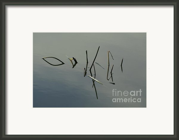 Reflection Framed Print By Odon Czintos
