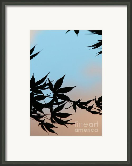 Rejoice Framed Print By Sweet Moments Photography