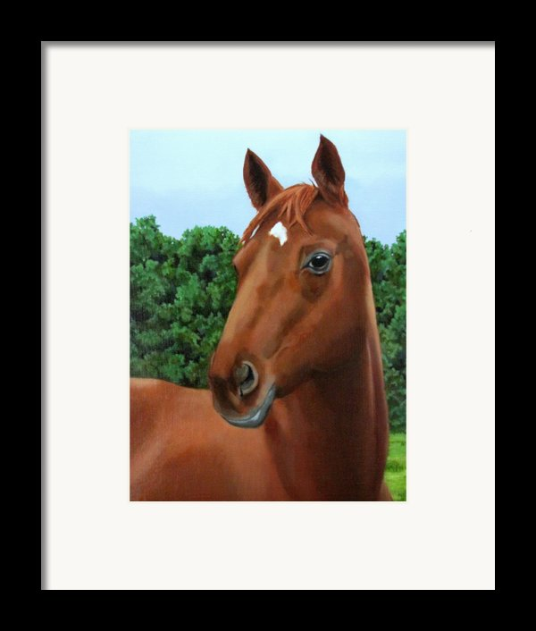 Retired Racer Framed Print By Sandra Chase